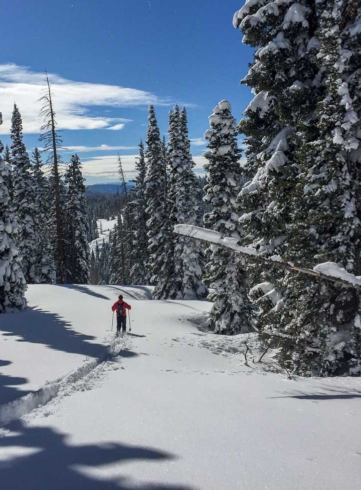 Dean cross-country skiing