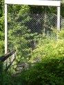 fencedofftrail