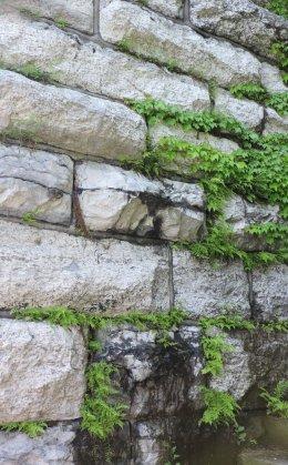 stonework Linear Park color