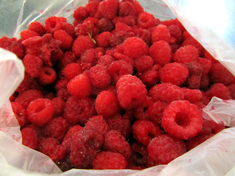 Moldova Raspberries