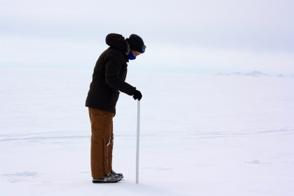 First day in the field and I'm trusted with a highly specialized piece of equipment -- a meter stick -- to measure snow depth across a transect.