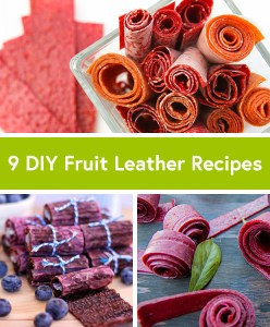 9 DIY Fruit Leather Recipes http://dailyburn.com/life/recipes/homemade-fruit-roll-up-recipes/