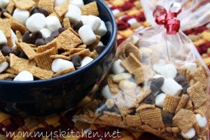 Smores Trail Mix from MommysKitchen.net