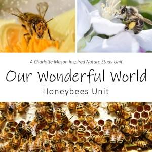 Our Wonderful World: Honeybees Unit Nature Study at LifeInTheNerddom.com