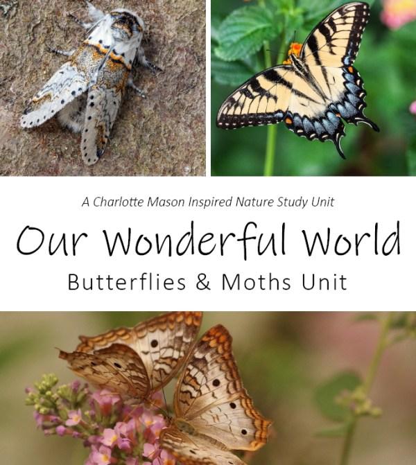 Our Wonderful World: Butterflies and Moths Unit Nature Study at LifeInTheNerddom.com