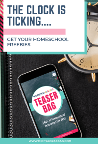 FREE Teaser Bag from Homeschool Grab Bag at LifeInTheNerddom.com