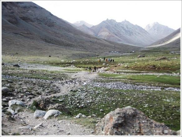 Kailash Parikrama - Green Valley