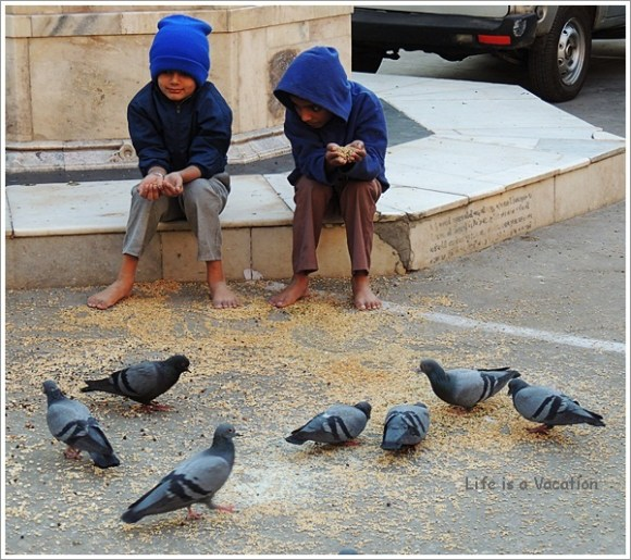 Boys feeding pigeons in Swaminarayan Kalupur