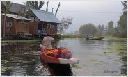 Dal Floating Flower Market