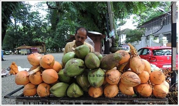 Foodie Trail in Kochi- Coconut Kochi Beach Kerala