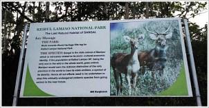 Manipur Imphal Keibul Lamjao National Park