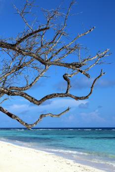 Reif für die Insel Silhouette...