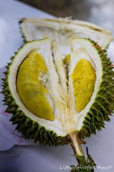 So sieht das Innere der Durian aus