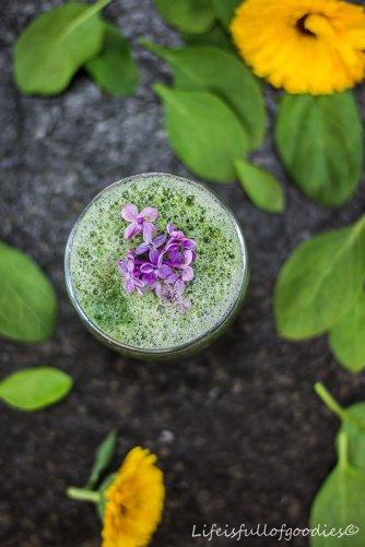Grüner Wassermelonen-Smoothie