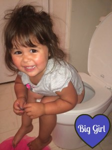 When Potty Training Fails:  Bathroom Routines for Toddlers