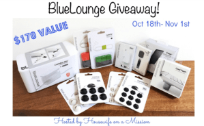 Welcome to the BlueLounge Giveaway
