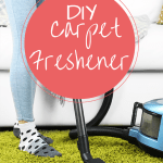 Make Your Own Carpet Freshener Blend