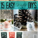 15 Easy Winter DIY's