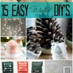 15 Easy Winter DIY's