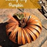 Canning Ring Pumpkin