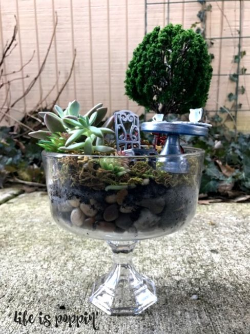 Easy Fairy Garden