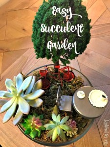 Easy Succulent Garden DIY – Perfect for a Tea Party!