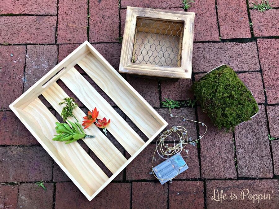 materials-succulent-planter