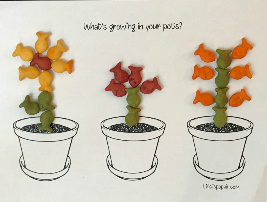 growing-in-pots