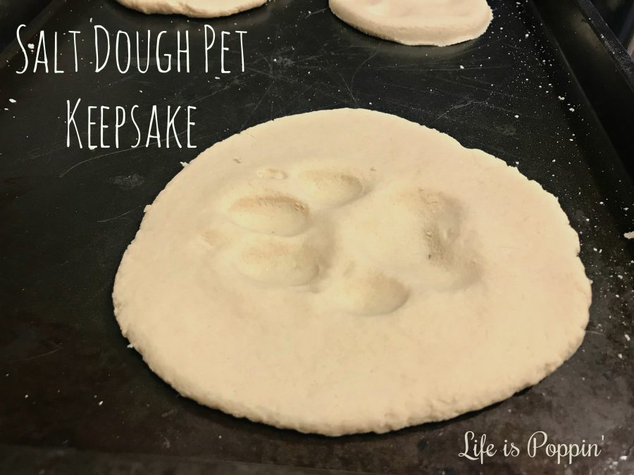 Salt-Dough-Pet-Keepsake