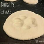 Salt Dough Pet Keepsake
