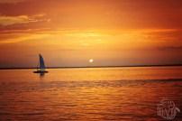 Orange Gulf Coast Sunset Photo   Life Is Sweet As A Peach