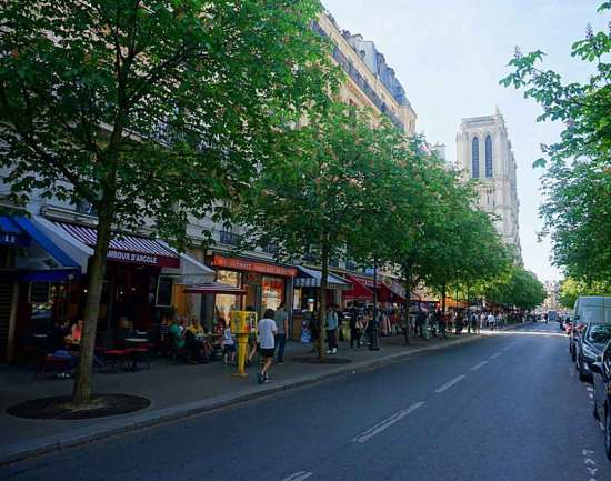 Pretty boulevard of green leafy trees leading towards Notre Dame
