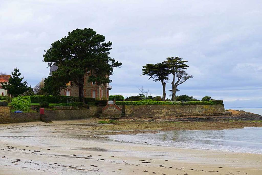 Sandy beach with 2 green trees shadowing a house on a peninsula