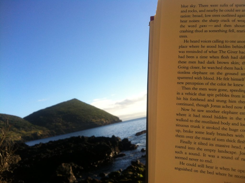 Reading a book looking over the ocean at the perfect picnic.