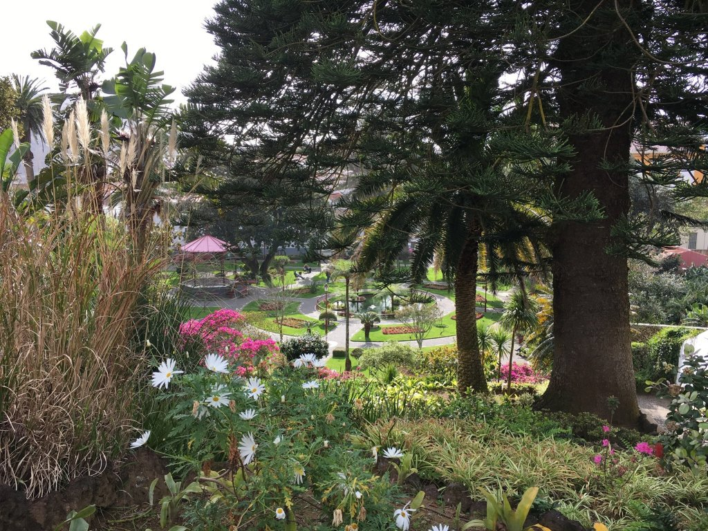 Flowers and trees overlooking a public square in the Duque de Terceira Garden.