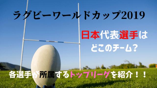 ラグビーワールドカップ2019日本代表選手が所属するチームとは?