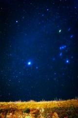 couple gazing at stars