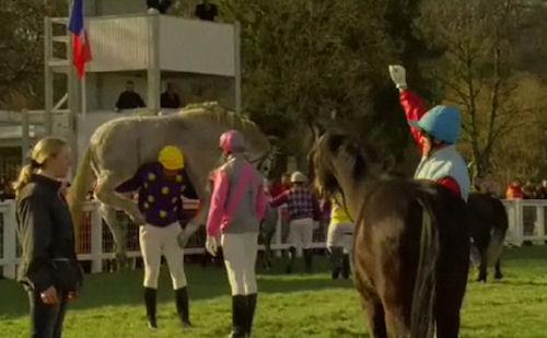 Vittel Water advertisement: Jockey of brown horse is the winner