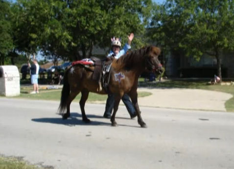 Walking with our horse in local town Independence Day parade.