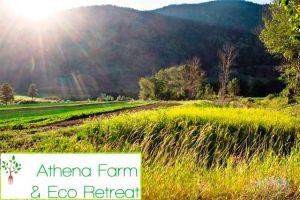 Athena Organic Farm and Eco Retreat fields with logo
