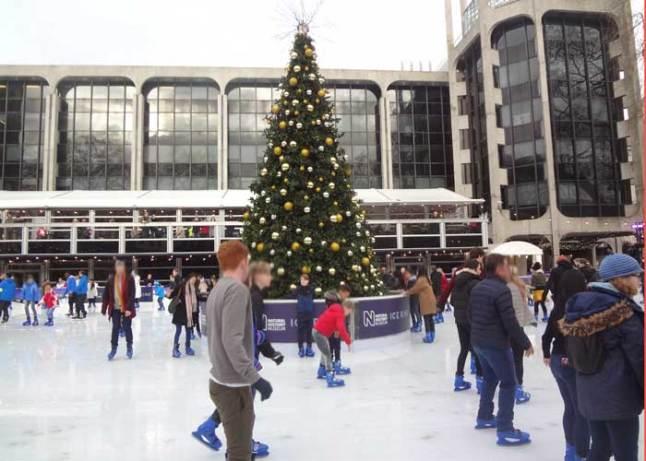 Ice Skating at The Natural History Museum