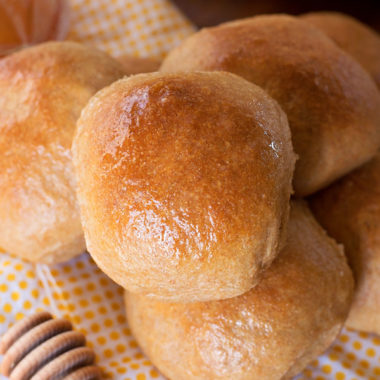 The Best 100% Whole Wheat Dinner Rolls