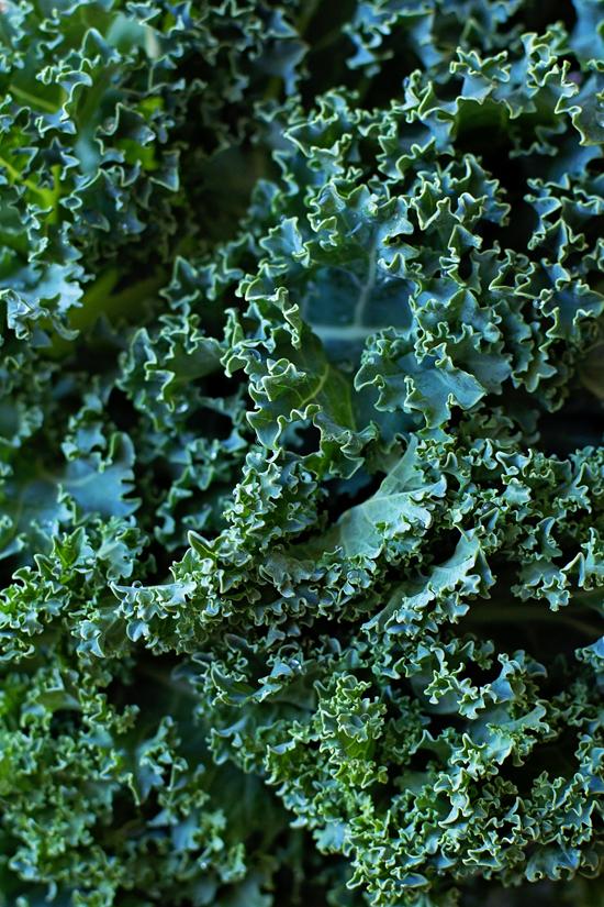 Homemade Zuppa Toscana   lifemadesimplebakes.com