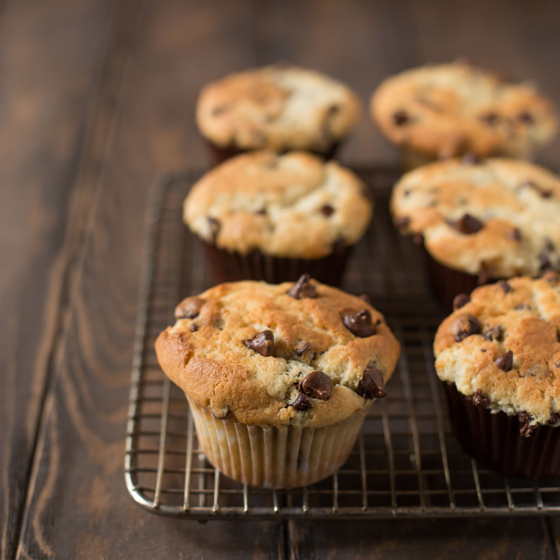Chocolate chip muffins on cooling rack