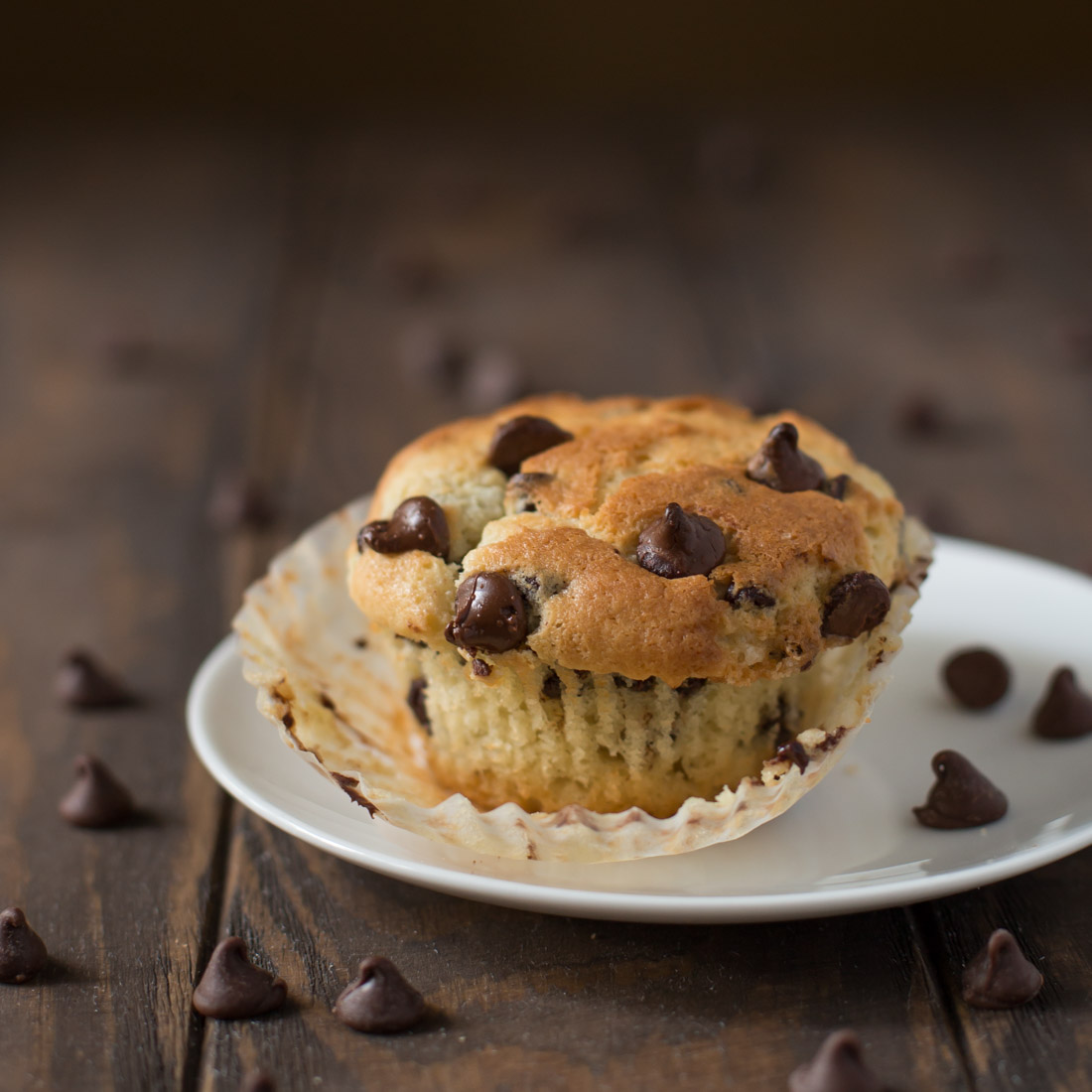 Chocolate Chip Muffin on white plate
