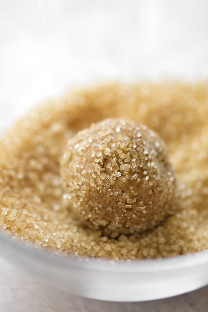 A ball of sparkling ginger molasses cookie dough rolled in chunky, raw turbinado sugar.
