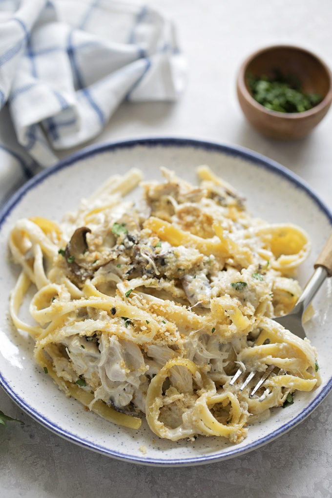 A hot dish of creamy chicken tetrazzini noodles.