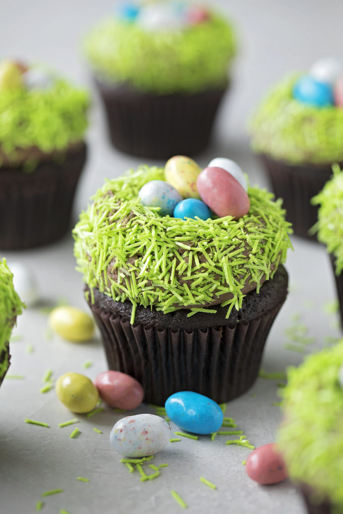 Chocolate bird nest cupcakes close up image