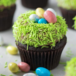 These malted chocolate nest cupcakes are a fun, festive, and easy Easter idea!