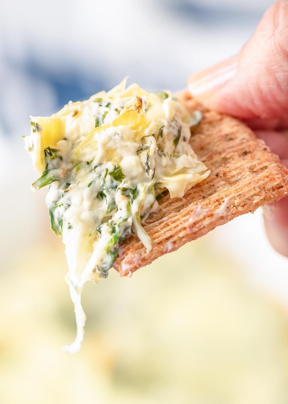 Hot artichoke dip on a cracker